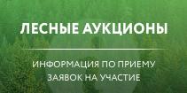 Лесные аукционы